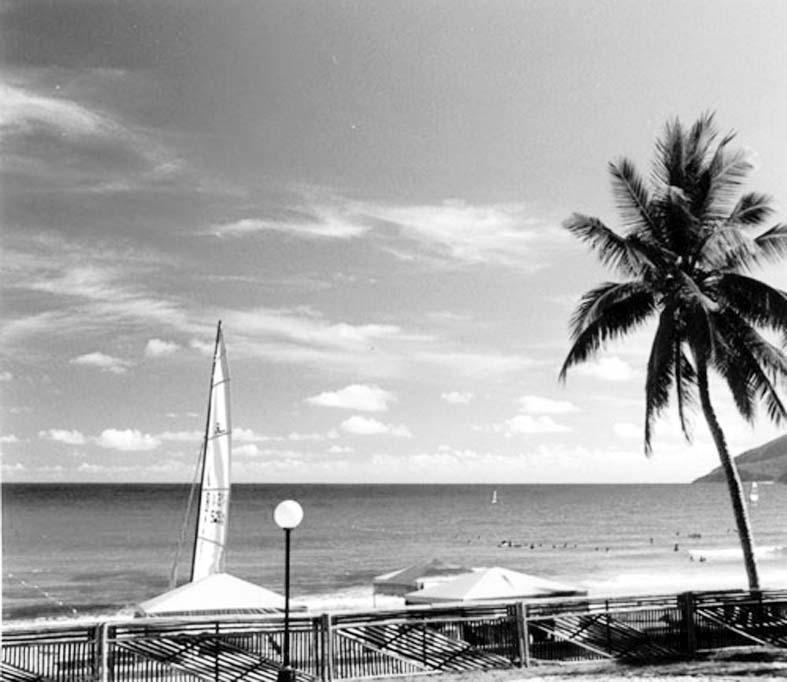 如目前海南旅游服务人员能讲英语的偏少,国际人士到海南语言不通.